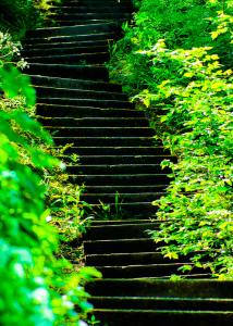 stepsforblog